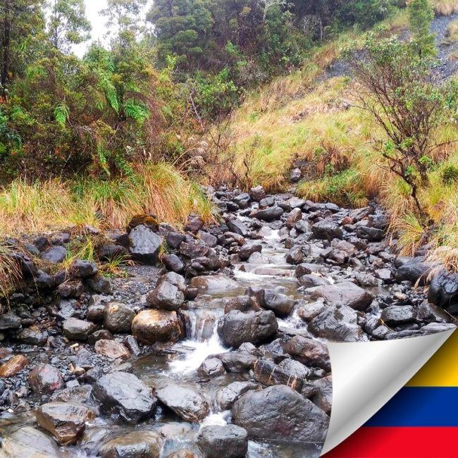 Tour Parque Nacional Chingaza