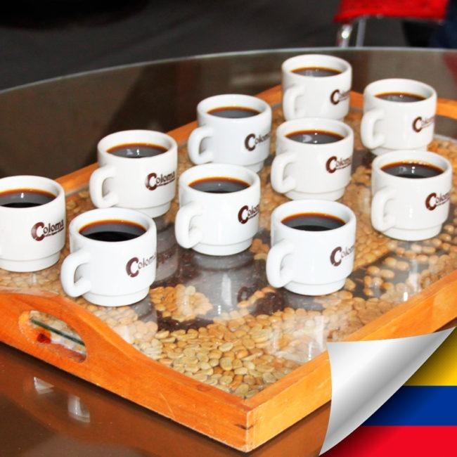Tour del café en Hacienda Coloma