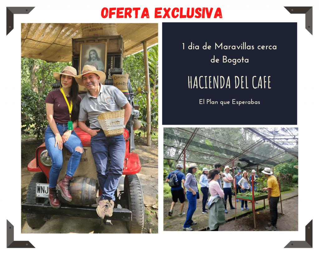 Hacienda del cafe